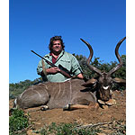 Kudu in South Africa